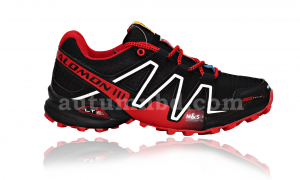 Salomon running shoes
